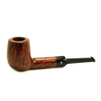 Stanwell Royal Guard 13